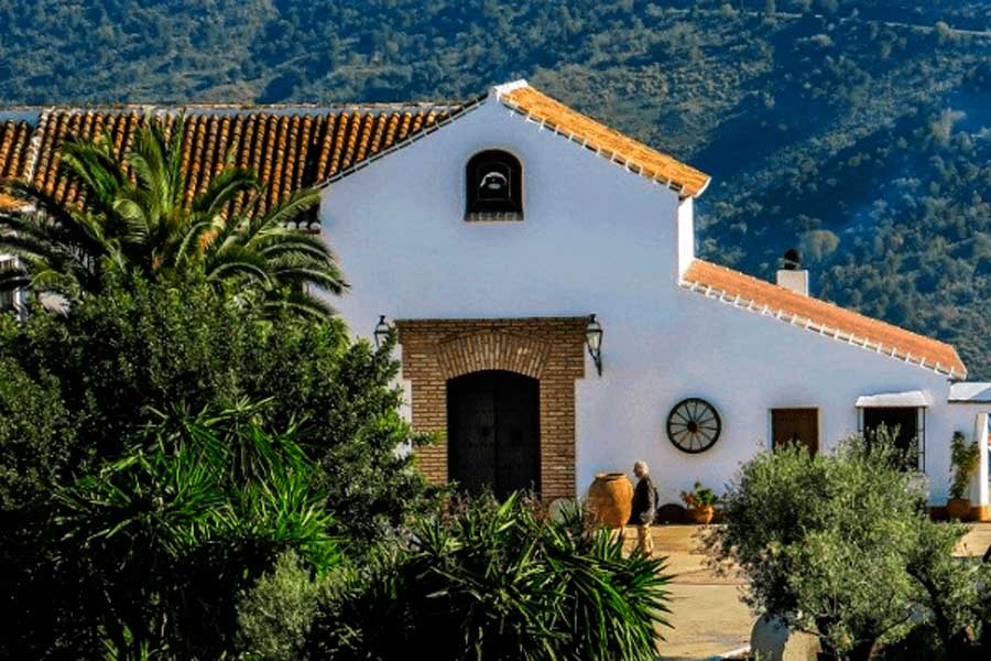 Wine tourism / Oleotourism in Malaga